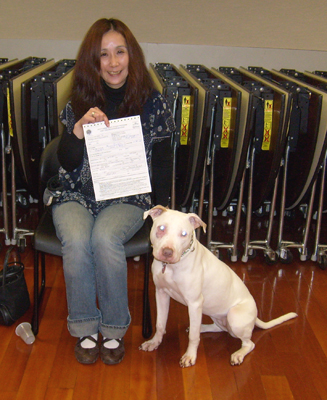 pit bull, canine good citizen CGC